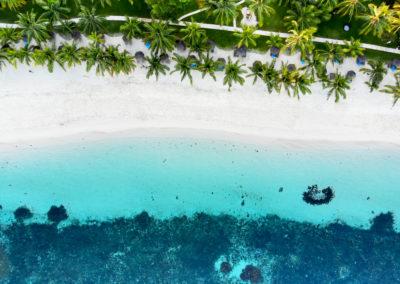Enchanted Mauritius