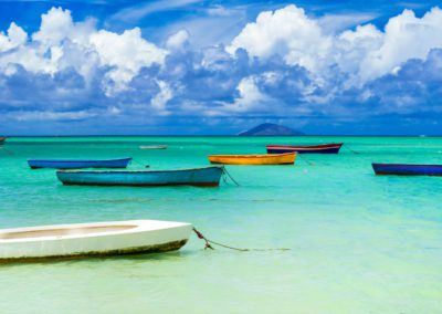 Wild Mauritius