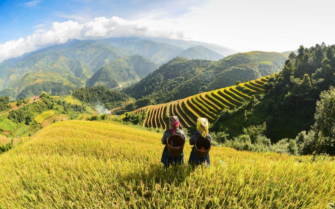 EXPERIENCE – Noord-Vietnam: Stammen & Markten